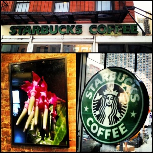 81st and 2nd Starbucks